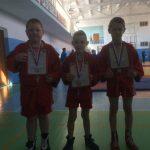 Межрегиональный турнир по борьбе самбо среди юношей в различных весовых категориях