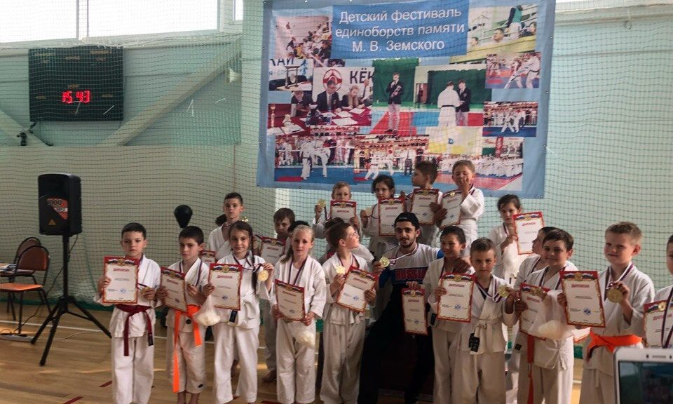 Ежегодный детский фестиваль единоборств памяти М.В. Земского